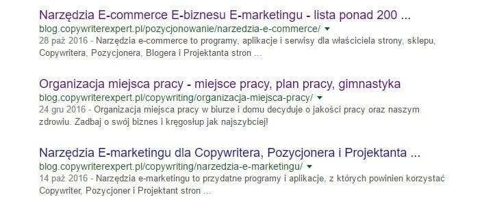 metatagi blog.copywriterexpert