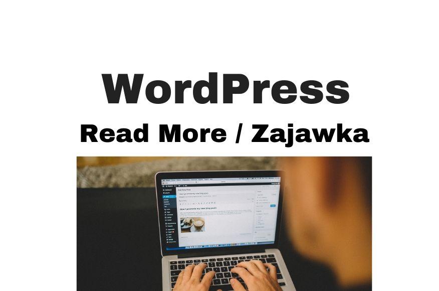 Read More / Excerpt / Zajawka WordPress. Jak zmienić i dlaczego?!
