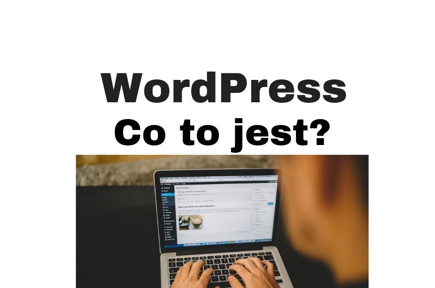 WordPress co to jest? CMS i tworzenie stron www