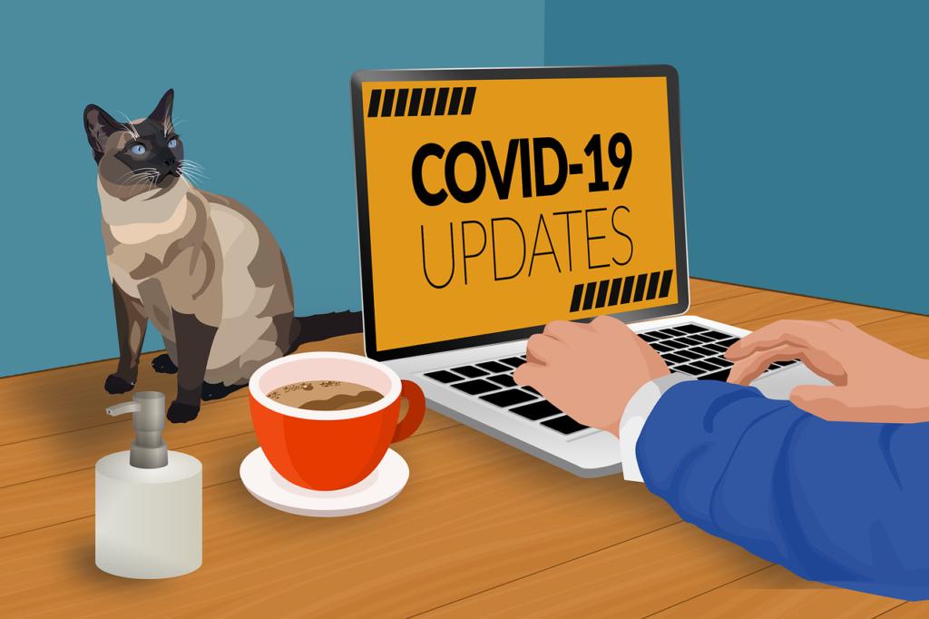 Koronawirus COVID-19 rozwinął pracę zdalną
