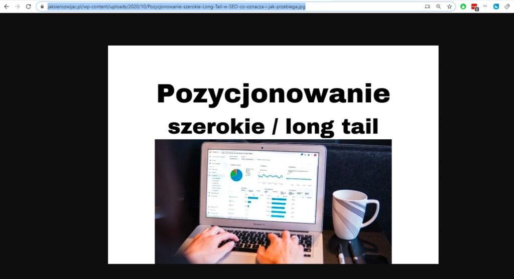 Znalezienie i skopiowanie adresu URL obrazka, zdjęcia na stronie www - część 2