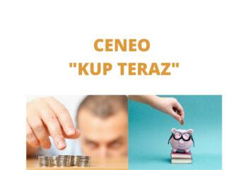 Jak działa KUP TERAZ w CENEO czyli jak oszczędzać i kupować tanio