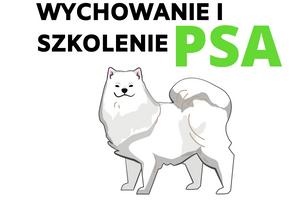 Kurs wychowanie i szkolenie psa online