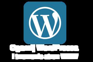 Ogarnij WordPressa i tworzenie stron WWW (300 x 200 px)